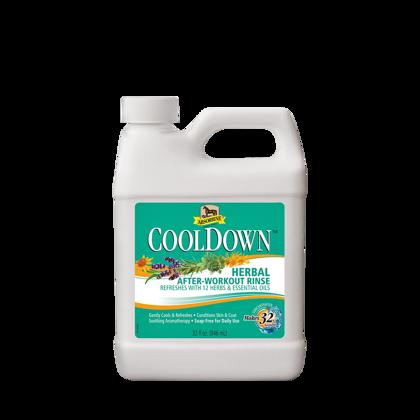 CoolDown šampūns 946ml